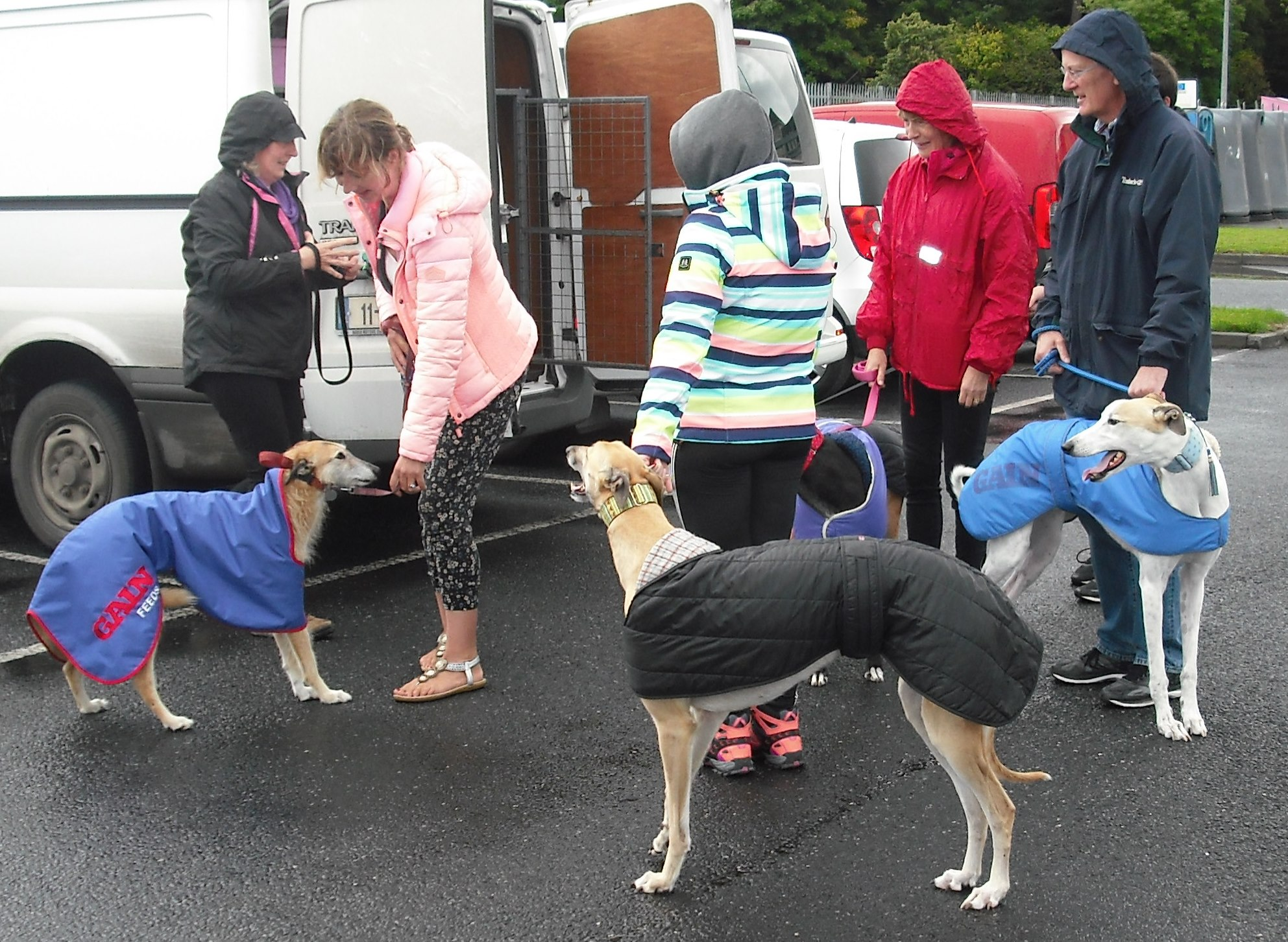 Owners and Supporters getting ready for the Clonmel Greyhound Stroll.jpg